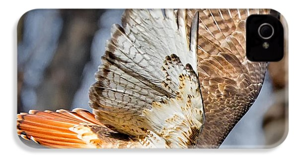 Fly Away IPhone 4 / 4s Case by Bill Wakeley