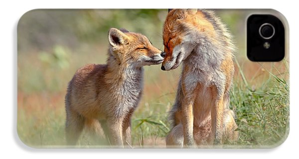 Fox Felicity - Mother And Fox Kit Showing Love And Affection IPhone 4 / 4s Case by Roeselien Raimond