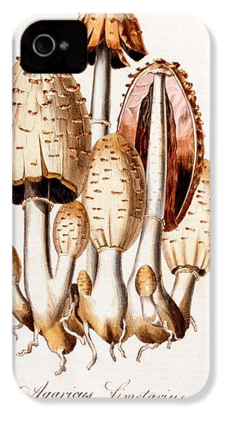 Fungi IPhone 4 / 4s Case by English School