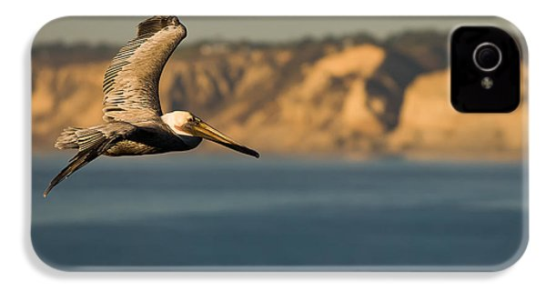 Gliding Pelican IPhone 4 / 4s Case by Sebastian Musial