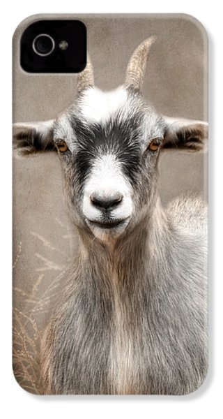 Goat Portrait IPhone 4 / 4s Case by Lori Deiter