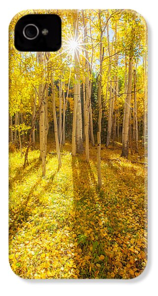 Golden IPhone 4 / 4s Case by Darren  White