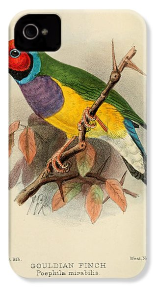 Gouldian Finch IPhone 4 / 4s Case by J G Keulemans