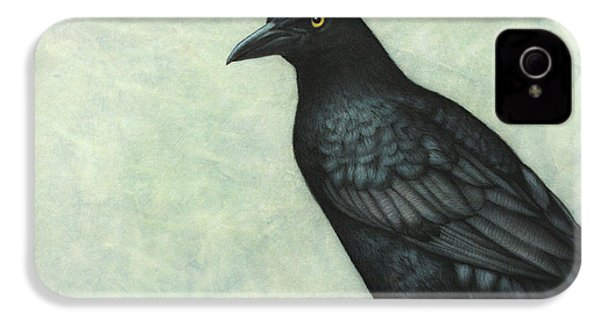 Grackle IPhone 4 / 4s Case by James W Johnson