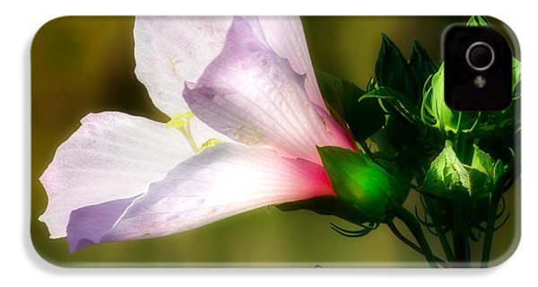 Grasshopper And Flower IPhone 4 / 4s Case by Mark Andrew Thomas