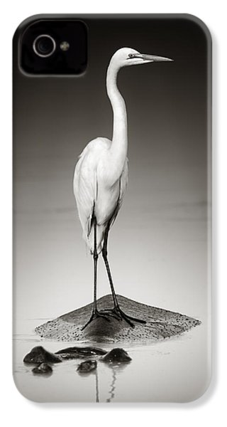 Great White Egret On Hippo IPhone 4 / 4s Case by Johan Swanepoel