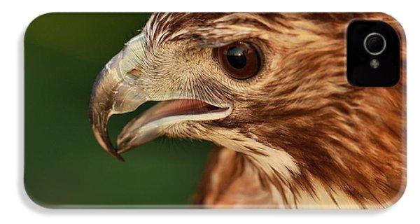 Hawk Eyes IPhone 4 / 4s Case by Dan Sproul