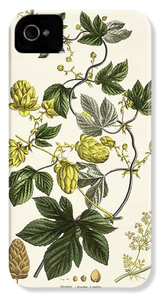 Hop Vine From The Young Landsman IPhone 4 / 4s Case by Matthias Trentsensky