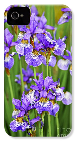 Irises IPhone 4 / 4s Case by Elena Elisseeva