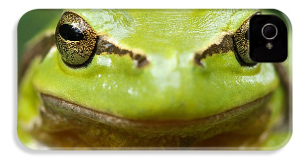 It's Not Easy Being Green _ Tree Frog Portrait IPhone 4 / 4s Case by Roeselien Raimond