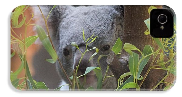 Koala Bear  IPhone 4 / 4s Case by Dan Sproul