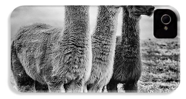 Lama Lineup IPhone 4 / 4s Case by John Farnan