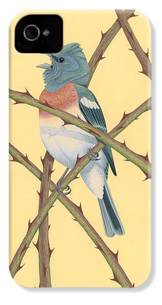 Lazuli Bunting IPhone 4 / 4s Case by Nathan Marcy