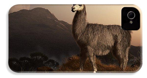 Llama Dawn IPhone 4 / 4s Case by Daniel Eskridge