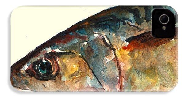 Mackerel Fish IPhone 4 / 4s Case by Juan  Bosco
