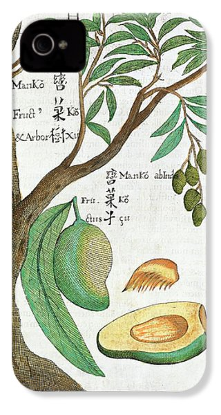 Mango Tree And Fruit IPhone 4 / 4s Case by Natural History Museum, London