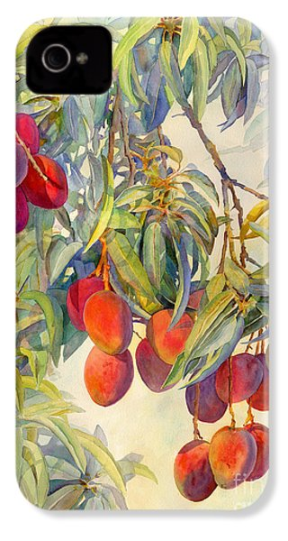 Mangoes In The Evening Light IPhone 4 / 4s Case by Dorothy Boyer