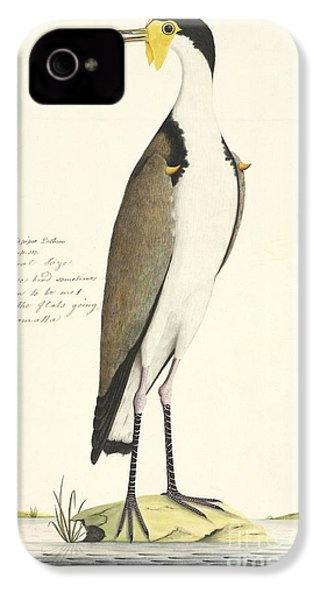 Masked Lapwing, 18th Century IPhone 4 / 4s Case by Natural History Museum, London