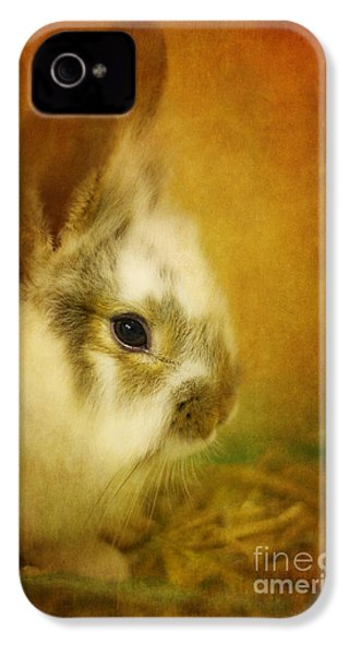 Memories Of Watership Down IPhone 4 / 4s Case by Lois Bryan