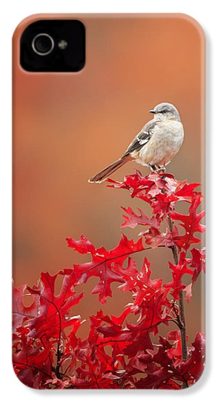 Mockingbird Autumn IPhone 4 / 4s Case by Bill Wakeley