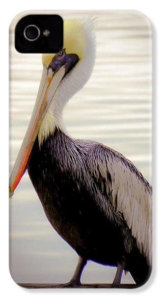 My Visitor IPhone 4 / 4s Case by Karen Wiles