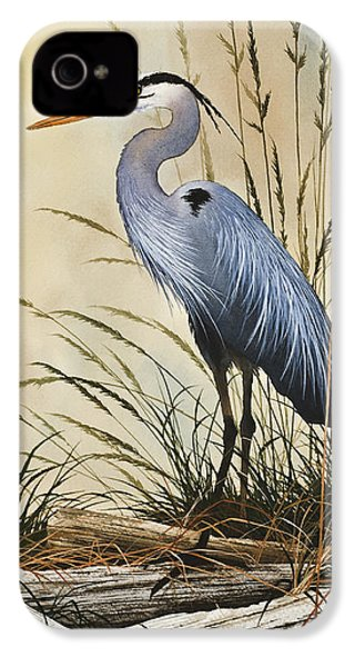 Natures Grace IPhone 4 / 4s Case by James Williamson