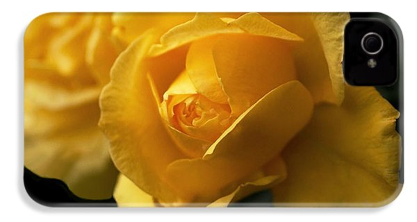 New Yellow Rose IPhone 4 / 4s Case by Rona Black