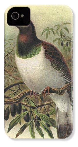 New Zealand Pigeon IPhone 4 / 4s Case by J G Keulemans