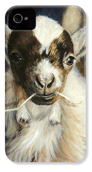 Nigerian Dwarf Goat With Straw IPhone 4 / 4s Case by Dottie Dracos