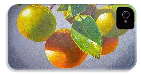 Oranges IPhone 4 / 4s Case by Carey Chen