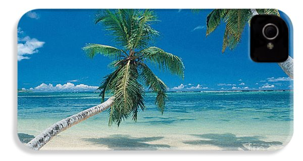 Palm Tree Painting IPhone 4 / 4s Case by Marvin Blaine