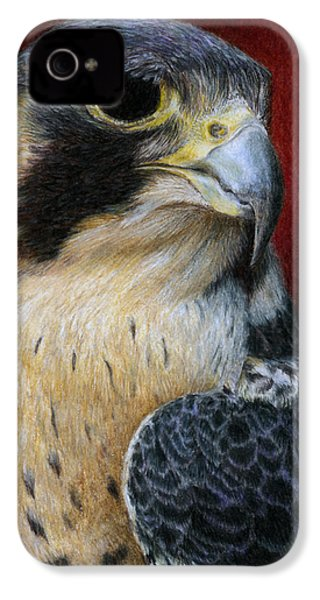 Peregrine Falcon IPhone 4 / 4s Case by Pat Erickson