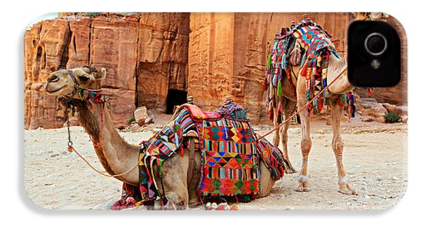 Petra Camels IPhone 4 / 4s Case by Stephen Stookey