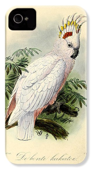 Pied Cockatoo IPhone 4 / 4s Case by J G Keulemans