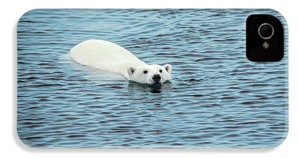 Polar Bear Swimming IPhone 4 / 4s Case by Peter J. Raymond