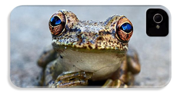 Pondering Frog IPhone 4 / 4s Case by Laura Fasulo