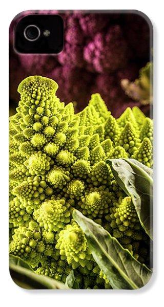 Purple And Romanesque Cauliflowers IPhone 4 / 4s Case by Aberration Films Ltd
