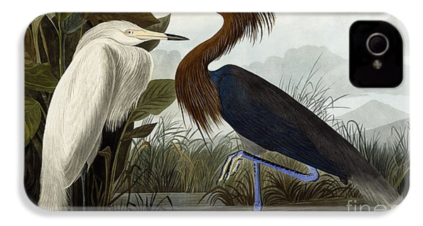 Purple Heron IPhone 4 / 4s Case by John James Audubon