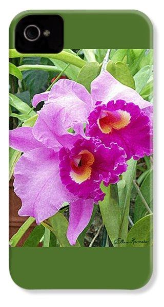 Purple Cattleya Orchids IPhone 4 / 4s Case by Ellen Henneke