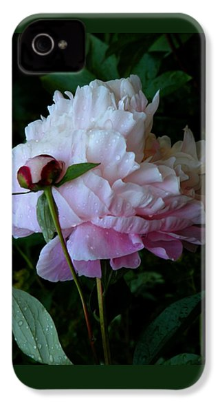 Rain-soaked Peonies IPhone 4 / 4s Case by Rona Black