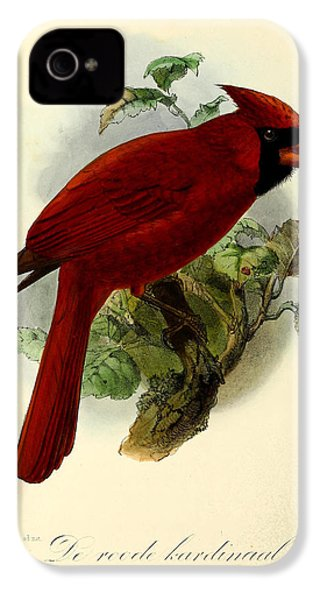 Red Cardinal IPhone 4 / 4s Case by J G Keulemans