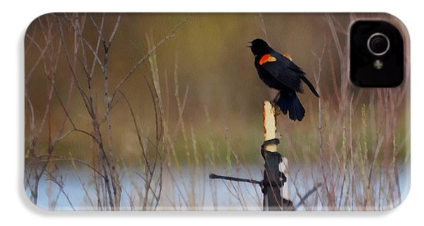 Red Winged Blackbird 2 IPhone 4 / 4s Case by Ernie Echols