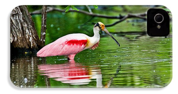 Roseate Spoonbill Wading IPhone 4 / 4s Case by Anthony Mercieca