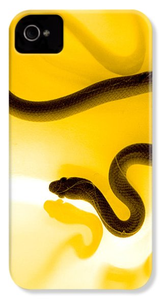 S IPhone 4 / 4s Case by Holly Kempe