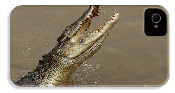 Salt Water Crocodile Australia IPhone 4 / 4s Case by Bob Christopher