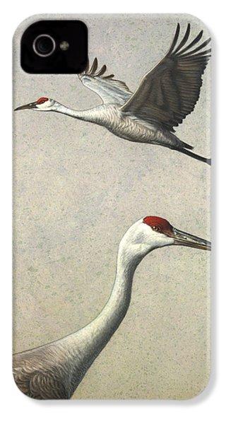 Sandhill Cranes IPhone 4 / 4s Case by James W Johnson