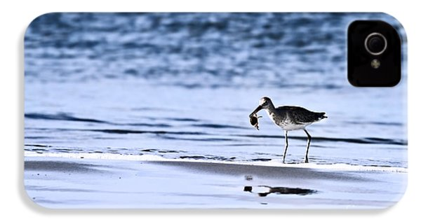 Sandpiper IPhone 4 / 4s Case by Stephanie Frey