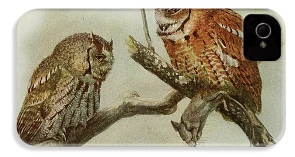 Screech Owls IPhone 4 / 4s Case by Louis Agassiz Fuertes