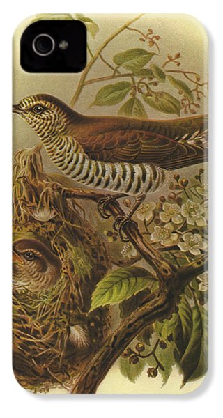 Shining Cuckoo IPhone 4 / 4s Case by J G Keulemans