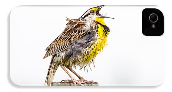 Singing Meadowlark 3rd Of 3 IPhone 4 / 4s Case by Bill Swindaman